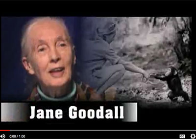 Jane Goodall on The Barron Prize