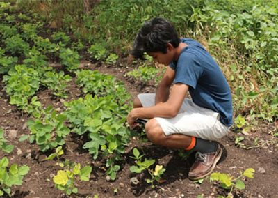 Neil, testing PlantumAI in the field